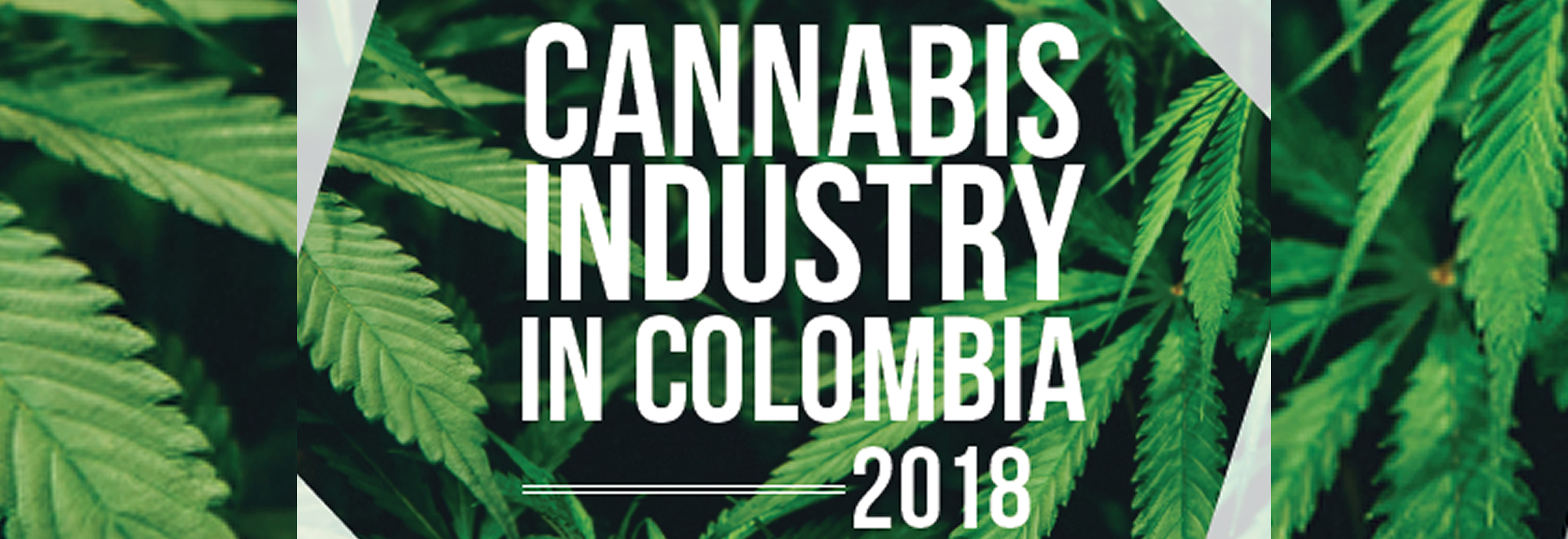 CANNABIS INDUSTRY IN COLOMBIA 2018