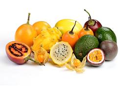 Frutas exóticas de Colombia para sacar el jugo en República Checa