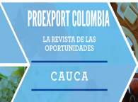 Revista de oportunidades Cauca 2014