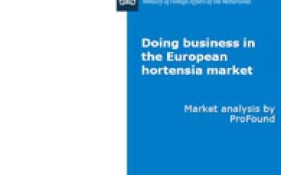 Doing business in the European hortensia market