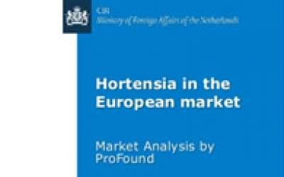 Hortensia in the European market