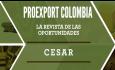 Revista de oportunidades Cesar 2014