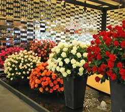 San Valentín es el tercer motivo de compra de flores en Estados Unidos
