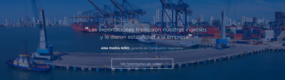 Testimonio - Ana María Niño
